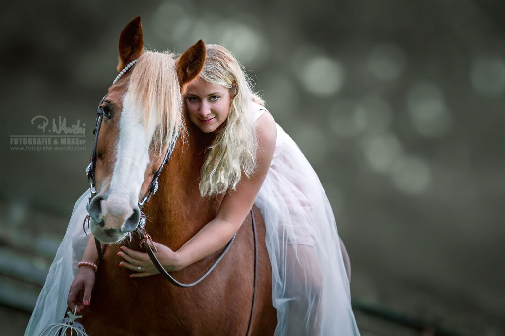 Pferdefotografie Winterthur
