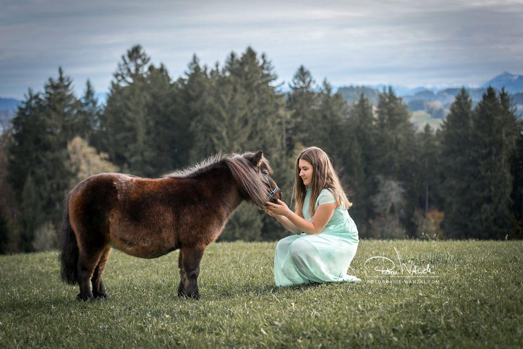 Pferde Fotografie Winterthur