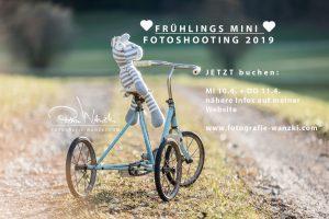 Kinderfoto auf dem Dreirad im Frühling auf einer Wiese