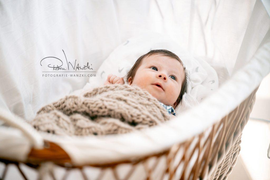 Fotoshooting Baby Newborn